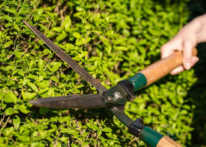 Entretien d'espaces verts à Bergerac